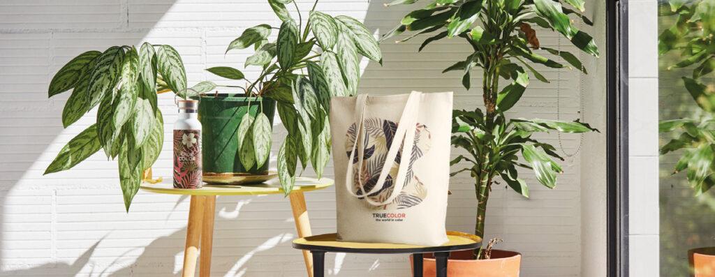 IMPACT: Eco-Friendly Promotional Merchandise